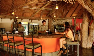 Thamalakane River Lodge bar in restaurant area