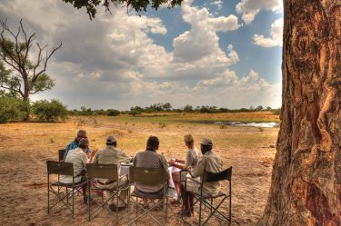 Mobile safari with Thamalakane River Lodge